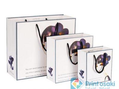 Xưởng in túi giấy nào ở Hà Nội giá rẻ mà chất lượng?