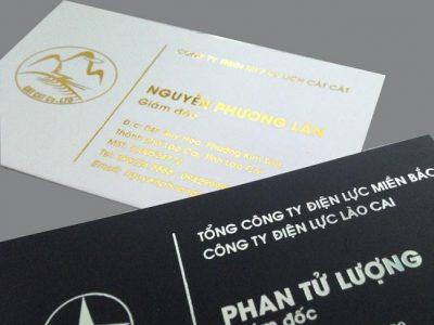 In card giá rẻ hà nội – Báo giá in card visit giá rẻ 2021