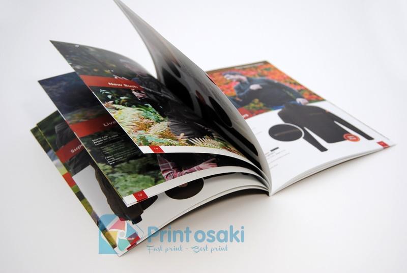Thiết kế catalogue đẹp với nhiều yếu tố minh họa